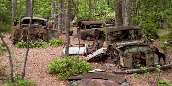 graveyard of cars